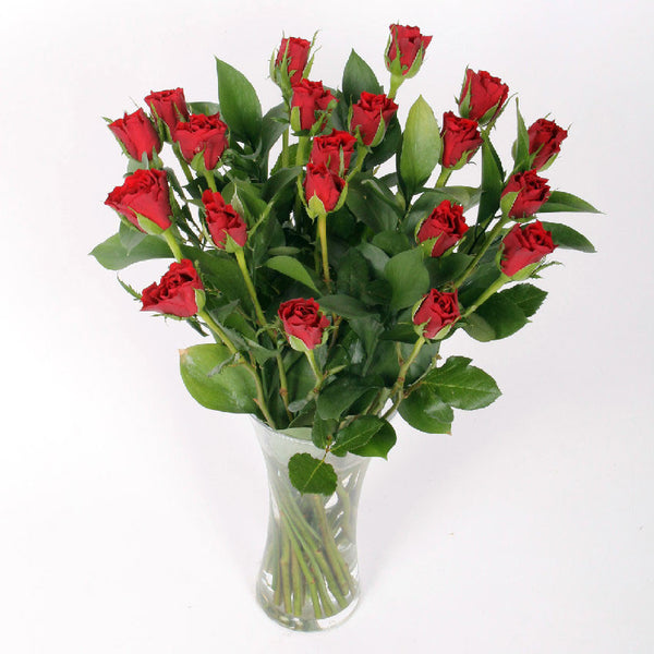 20 Red Roses with Greenery