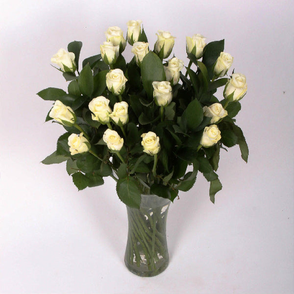 20 White Roses with Greenery