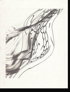 Book Cover. Untitled: Robert Lazzarini Works on Paper