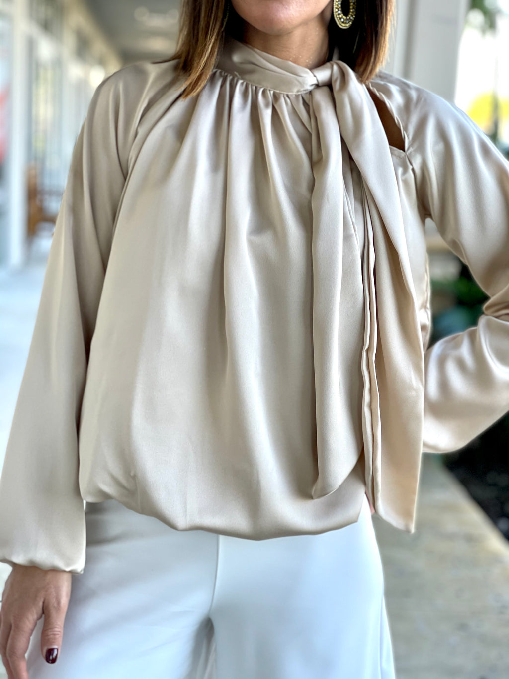 Solid Long Sleeve Neck Tie Blouse