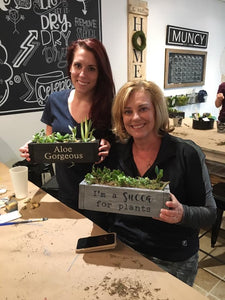 Planters & Succulents Workshop