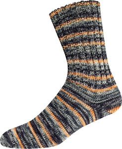 SUPERSOCKE 287 Merino Extrafein - COLOR 100g / 420m
