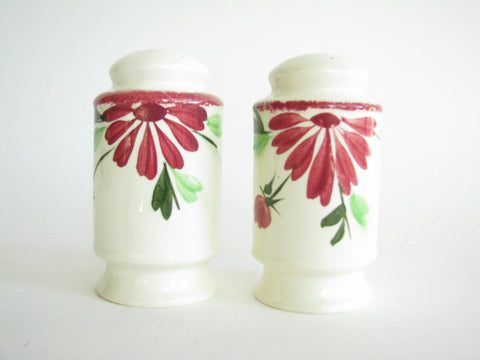 edgebrookhouse - 1940s Southern Pottery Blue Ridge Flounce Range Salt & Pepper Shakers - 2 Pieces