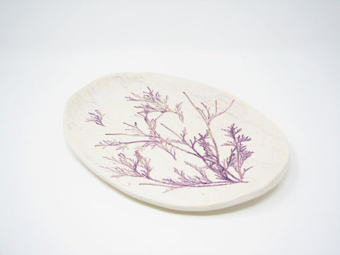 Handcrafted Pottery Decorative Plate or Trinket Dish with Herb Dill Wildflower Design by ViVi