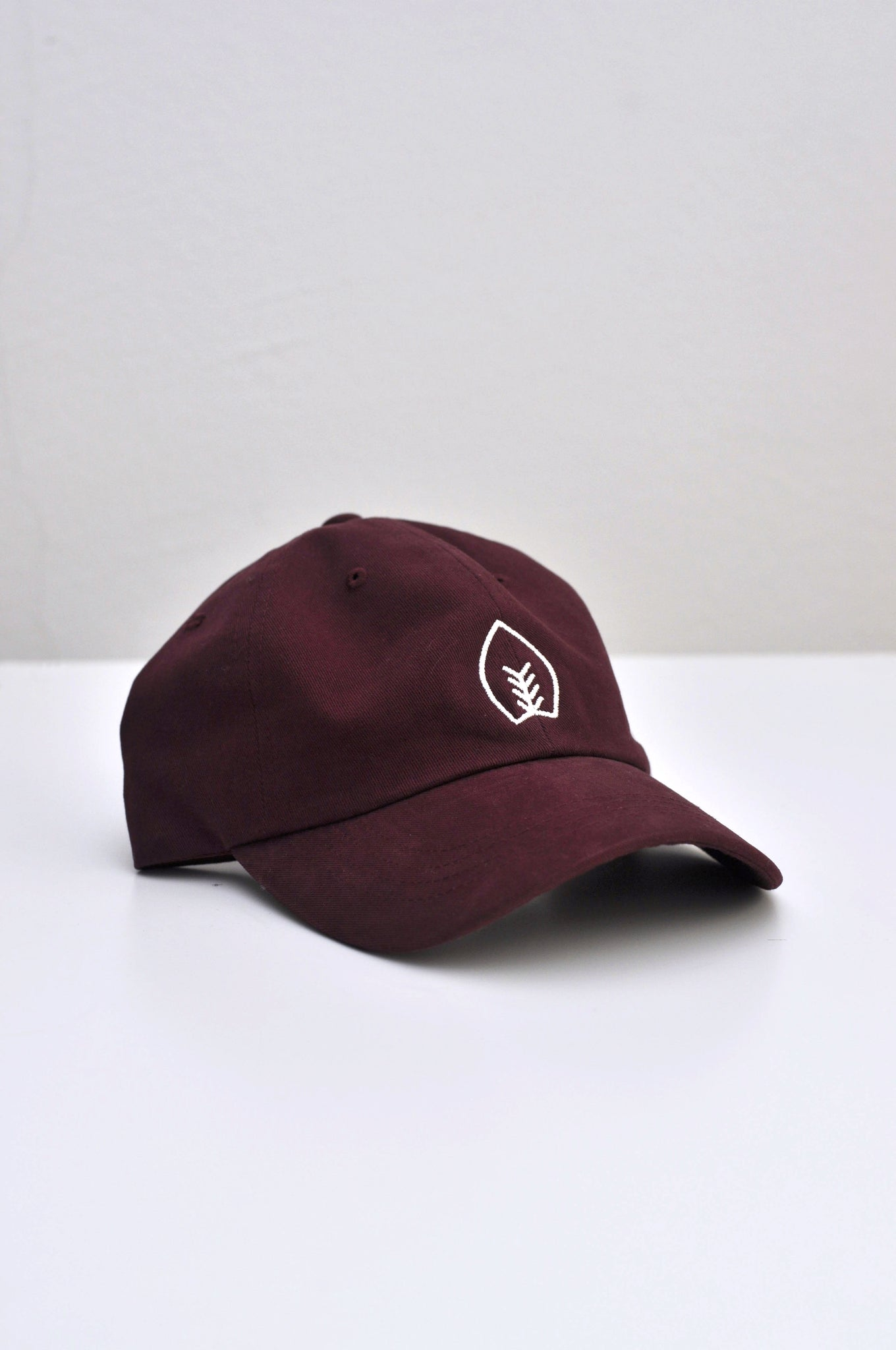 Logo Dad Hat – Various Colors