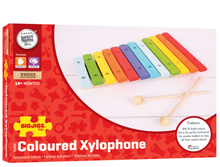 Load image into Gallery viewer, Bigjigs Snazzy Xylophone The Bubble Room Toy Store Dublin
