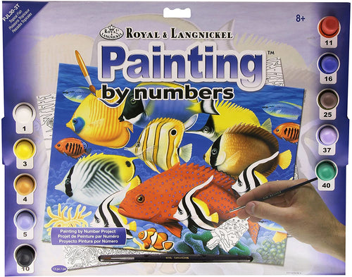 Royal & Langnickel Junior Tropical Fish Painting by Numbers Kit The Bubble Room Skerries Dublin