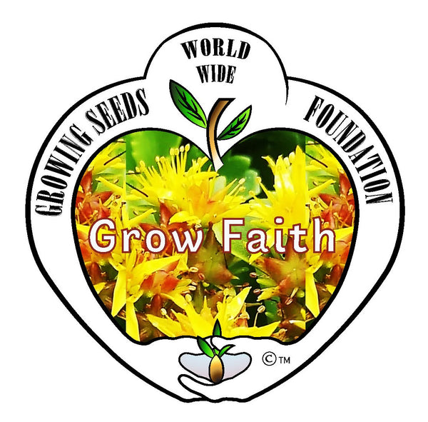 T-shirt - Growing Seeds Worldwide - Grow Faith