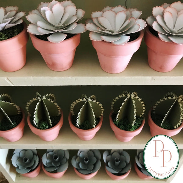 3 rows of small, lifelike paper succulents in tiny terracotta pots, sitting on light green shelves.