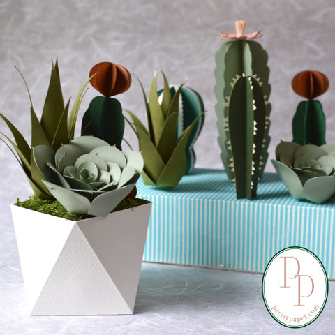 An arrangement of 3 life like paper succulents in a folded origami base. Other design options for the build your own arrangement are in the background.