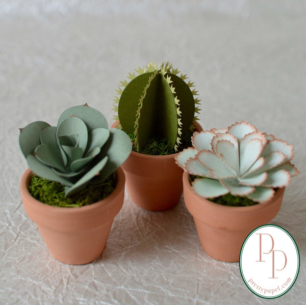 3 different, small handmade paper succulents and cactus  planted in preserved moss in tiny terracotta pots. Shown against a white background.