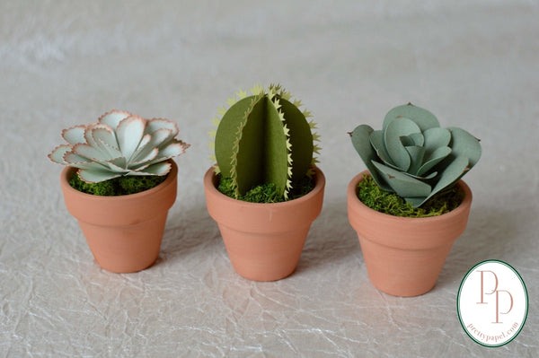 3 different, small, handmade paper succulents and cactus planted in preserved moss in tiny terracotta pots. Shades of blues and greens, shown against a white background.