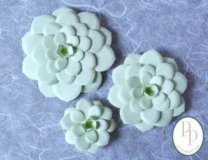 Set of 3, 3D paper echeveria succulent magnets in pistachio. Centers accented with iridescent green beads.