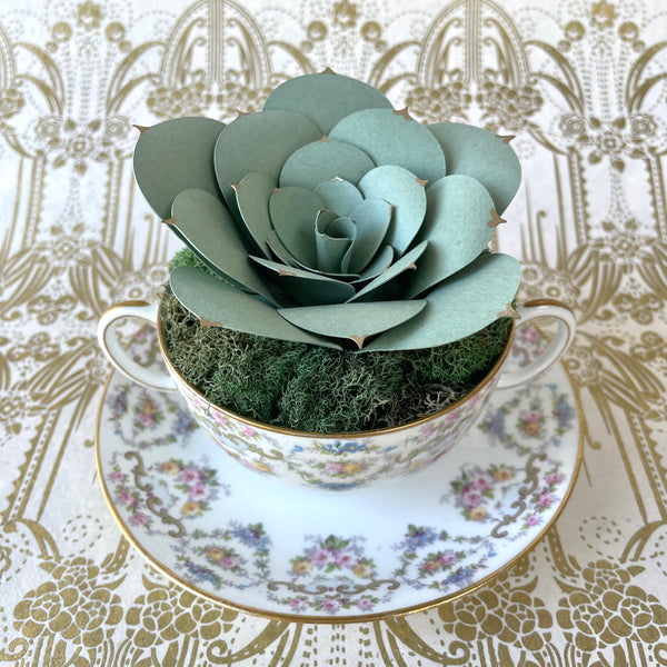 Paper Succulent, Dusty Echeveria in Antique JPL French Soup Cup
