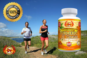 Quality Topia LLC Premium Turmeric w/ Ginger and BioPerine