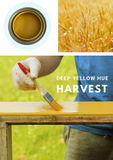 Harvest Yellow | Canterbury Blue - Signed Jaclyn