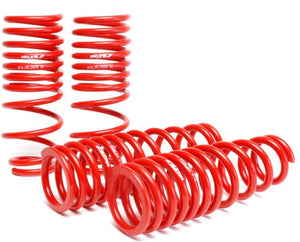 Skunk2 94-01 Acura Integra Lowering Springs (2.50in - 2.25in.) (Set of 4)