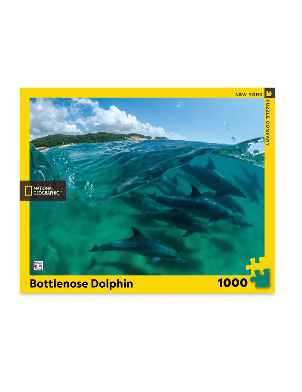 Bottlenose Dolphin Puzzle
