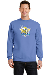 Port & Company® - Core Fleece Pullover Crewneck Sweatshirt (YOUTH)