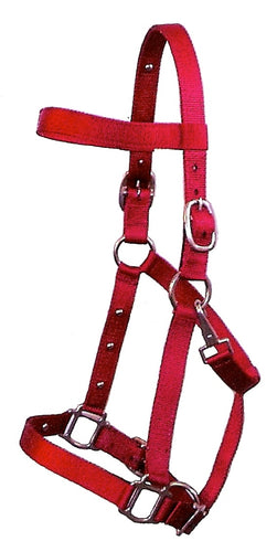 The Magic Horse Halter - Nylon