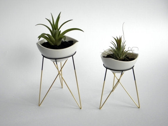 Jeremy Gold & Black Plant Stands + Pots-Set of 2