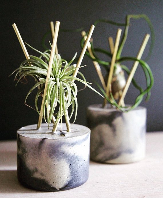 Marble Concrete Mod Duo Planters + Airpants