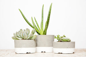 White Striped Planters-Set of 3