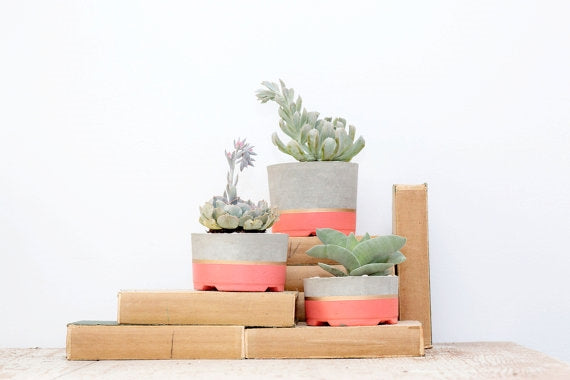 Coral+Concrete Gold Striped Planters-Set of 3