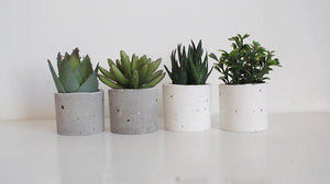 Croatian Concrete Mod Mod Planters-Set of 6