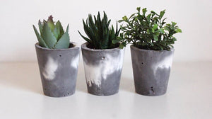 Trio Marbled Planters