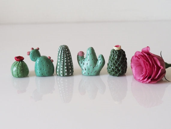 Cacti Collectibles Set of 5