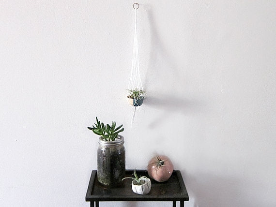 Macrame + Wood Bowl + Airplant