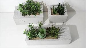 Los Grandes Concrete Planters-Set of 3