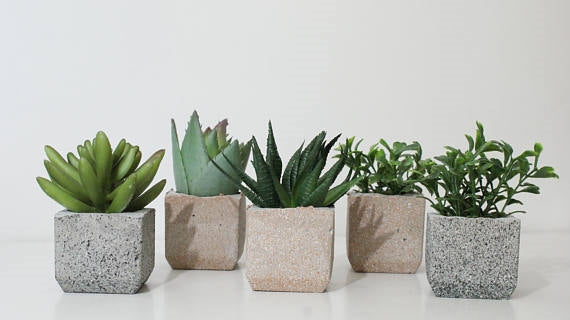 Giza Concrete Planters Set of 3