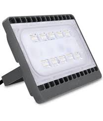Philips EcoLink 50 FloodLight - AMPLIFYMART