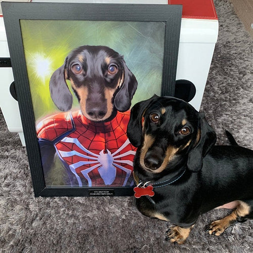 SPIDER MAN PET - CUSTOM PET PORTRAIT (50% OFF)
