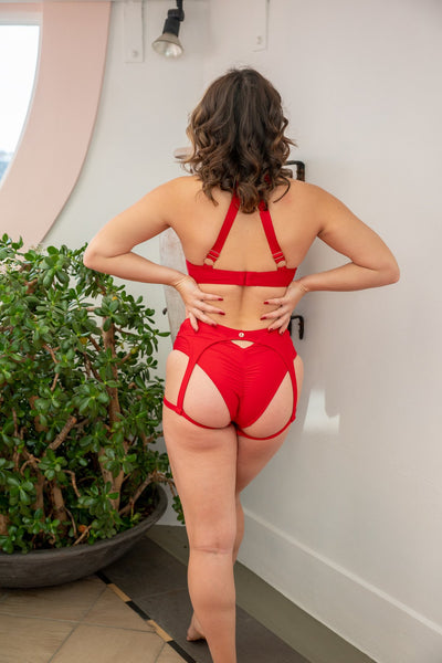 ALL THE FEELS: Zara Low Waisted Bottoms in Red - LUNALAE LUNA POLEWEAR