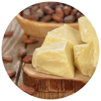 Theobroma Cacao (Cocoa) Seed Butter