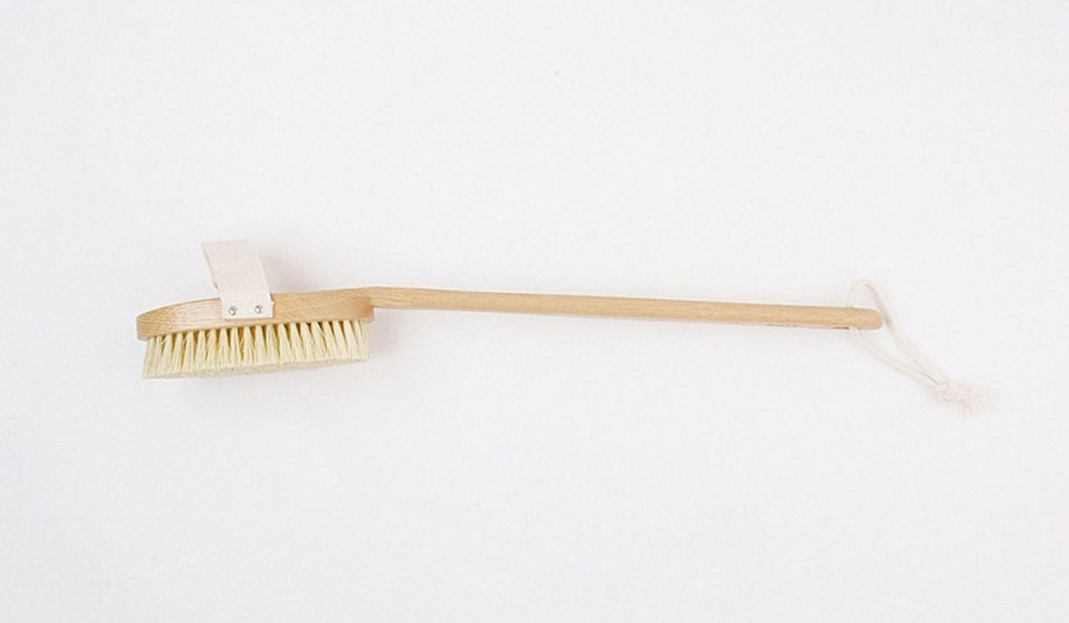 plastic free beauty dry skin brush