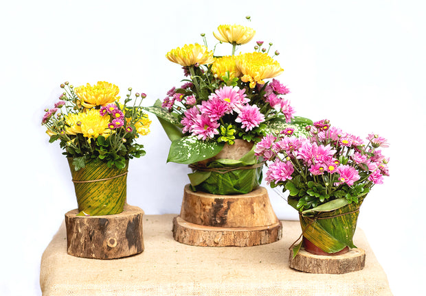 Home Floral Bundles