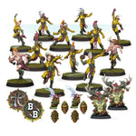 Catchers Athelorn Avengers Wood Elf Blood Bowl
