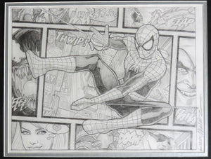Spider-Man Beyond The Borders Framed Original Art by Randy Martinez