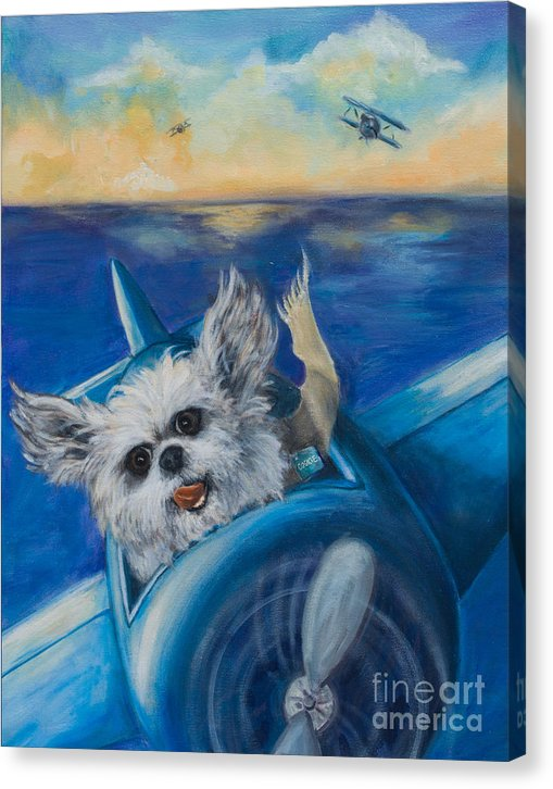 Cookie the Fighter Pilot - Canvas Print