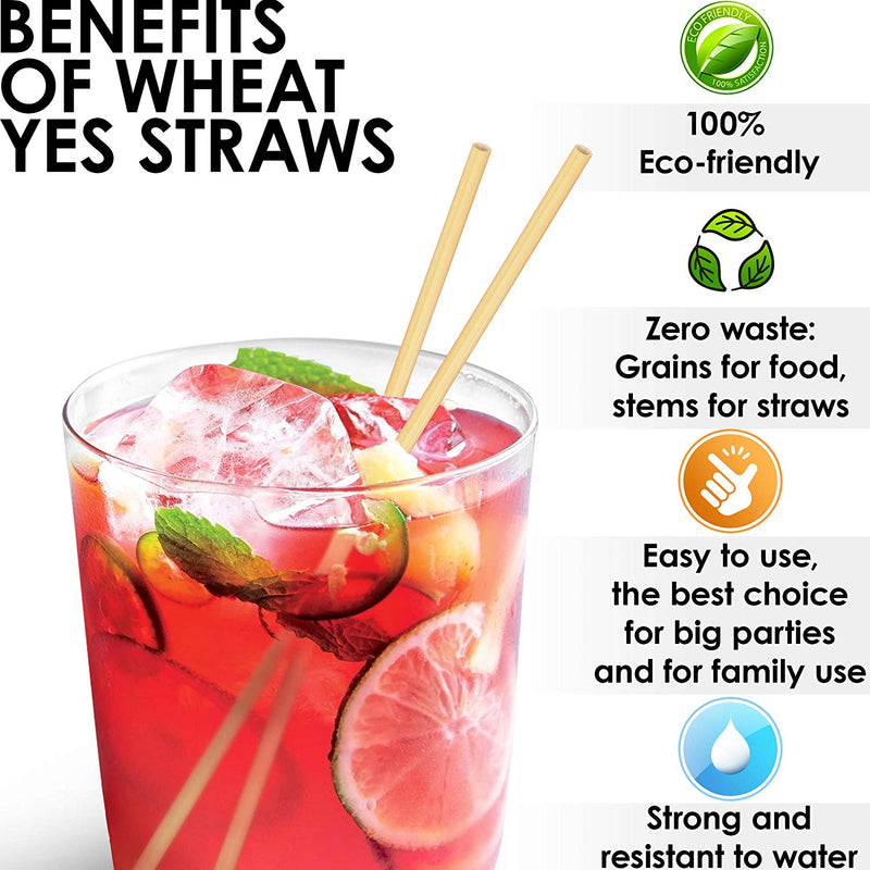 100% NATURAL WHEAT STRAWS Pack of 100