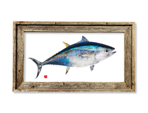 Framed colored Bluefin Tuna  26 x 16 framed print