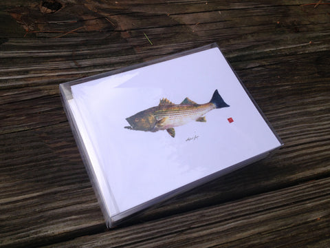 Set of 8 Striped Bass note cards