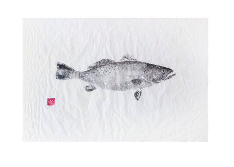 Speckled Sea Trout Original Print