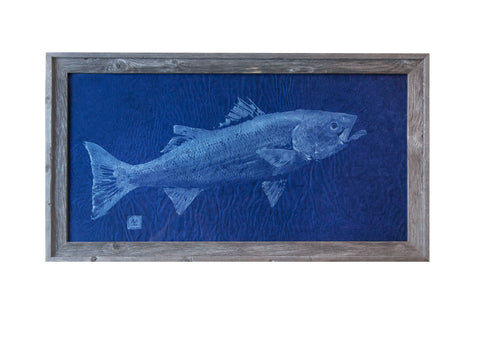 Striped Bass  Original Print White Ink on Blue Paper