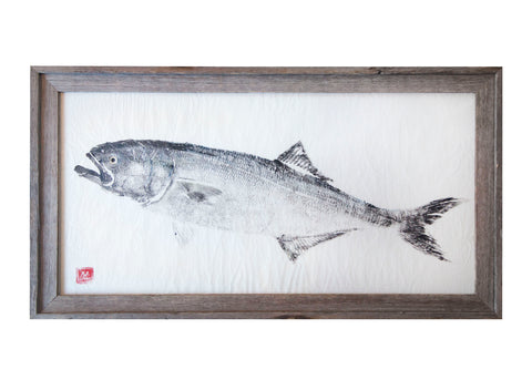 Bluefish Original Print