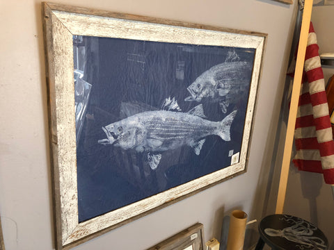 Striped Bass Pair - Original Print Framed